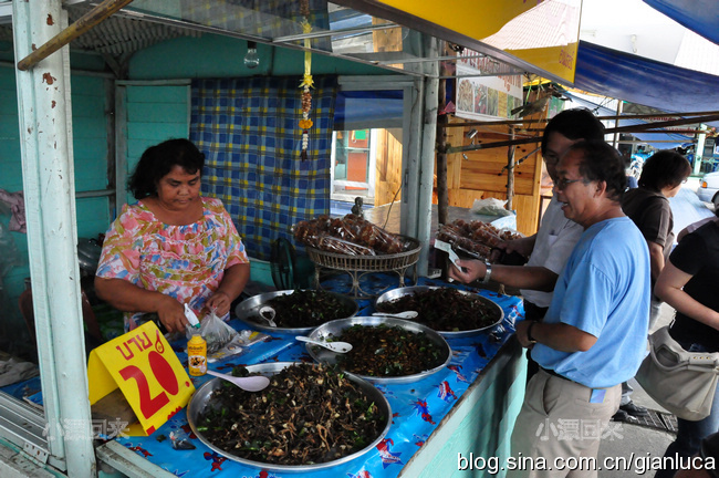 泰国:恐怖的虫虫成美食(组图) - 小漂回来 - 小漂回来的博客