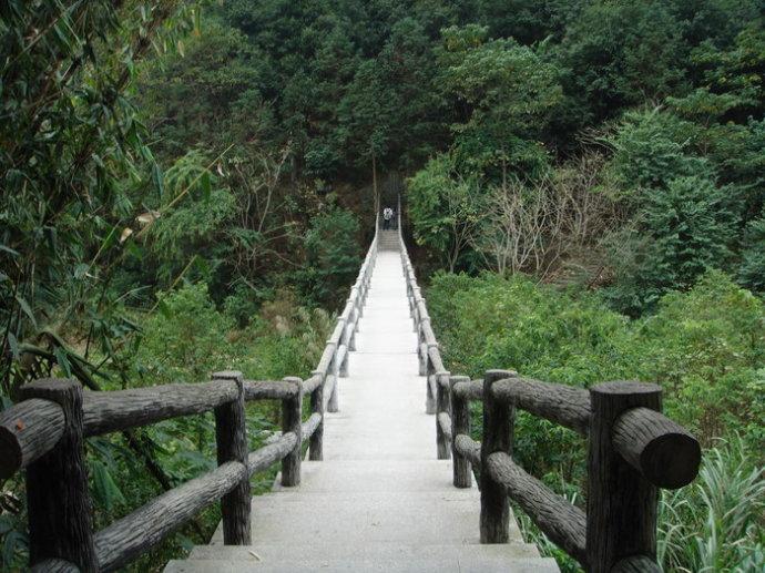 福州森林公园中的桥 - 老猫侠 - 老猫侠的博客