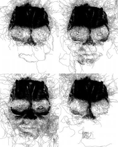 惊叹! 线条的艺术 - 文阁绘画工作室 - yangwenge923 的博客