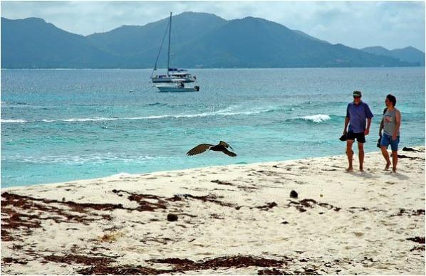 [原]塞舌尔-库金岛(02) - Tarzan - 走过大地