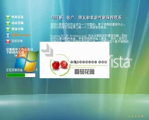 西红柿剿匪战:谁是微软真正的敌人? - 苗得雨 - 苗得雨:网事争锋
