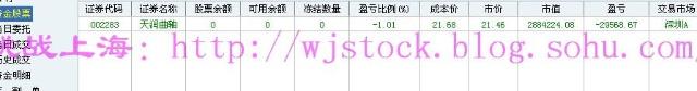 12月30日  年总结--结束2009! - 挑战上海 - 操盘实录