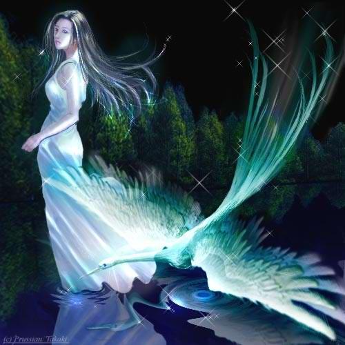别把天使弄丢了 - 宝贝我的爱人 - 宝贝我的爱人的博客