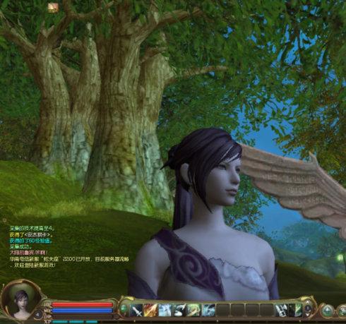 传说中的AION,我摸到了 - paradisekiss - ————————————迷失森林