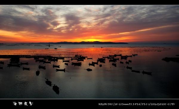 [原创]  喜迎朝霞 - 海狮 - 大连海狮的博客