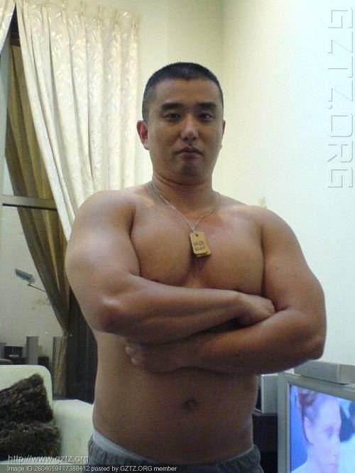 台湾男熊 - 沧海舒豪情 - 沧海舒豪情