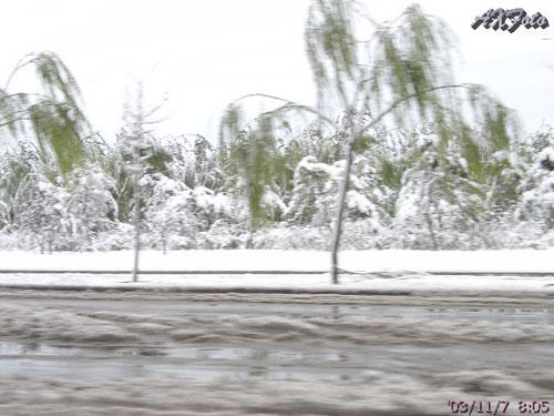 20031107 北京的第一场雪 - 天外飞熊 - 天外飞熊