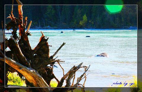 [原创]梦幻西域(03/35)湖怪之谜《贺新凉》 - 自由诗 - 人文历史自然 诗词曲赋杂谈