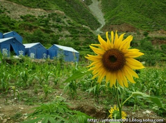 09年暑假西部支教--陇南中寨、木元小学李佳洋的总结【林子支教视线】 - 西部旅行者 - 在贫困中寻找力量