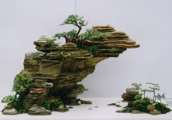 你见过这样的盆景吗 - hewei669958的博客 - xuancheng209@126 的博客