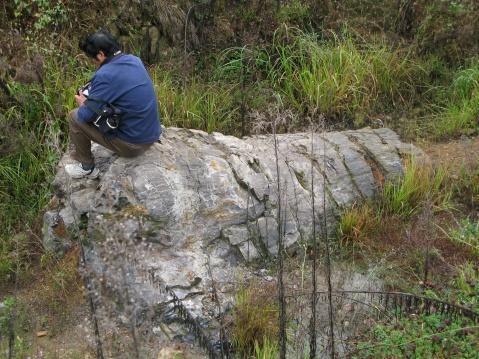木化石 - 过客 - 过客的碎屑