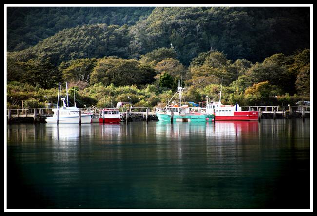 (浓缩版)新西兰南岛之米福峡湾 - 人走茶凉 - 人走茶凉的博客