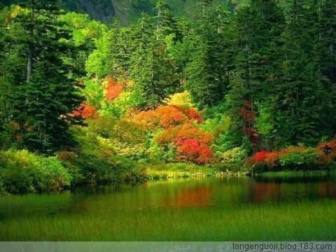 引用 【心情日志】人生四季情怀 - wangshihui.yi - 梅魂 欢迎你来做客。