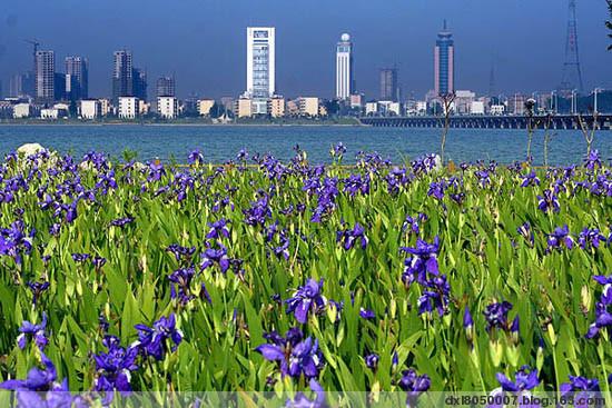中国最美丽的地方----图说临沂 - 董涵宇 - 董涵宇 的博客