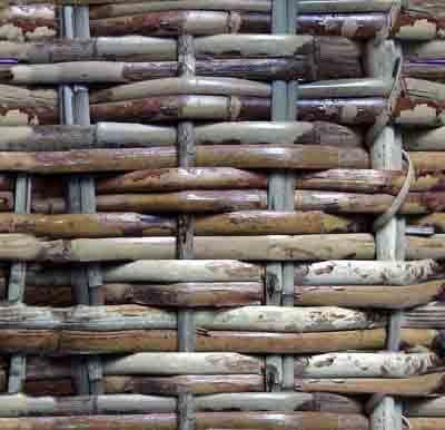 竹建筑设计 - savagexy - Savagexy