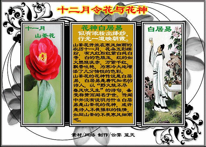 十二月令与花神(制作:云雾 蓝天) - 艺海无涯 - 艺海无涯