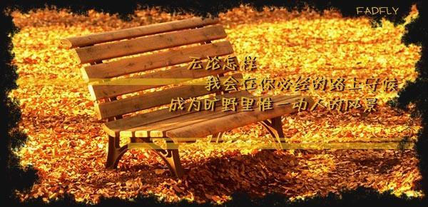 守候 - 雁月菊蚕 - 流泪的风......