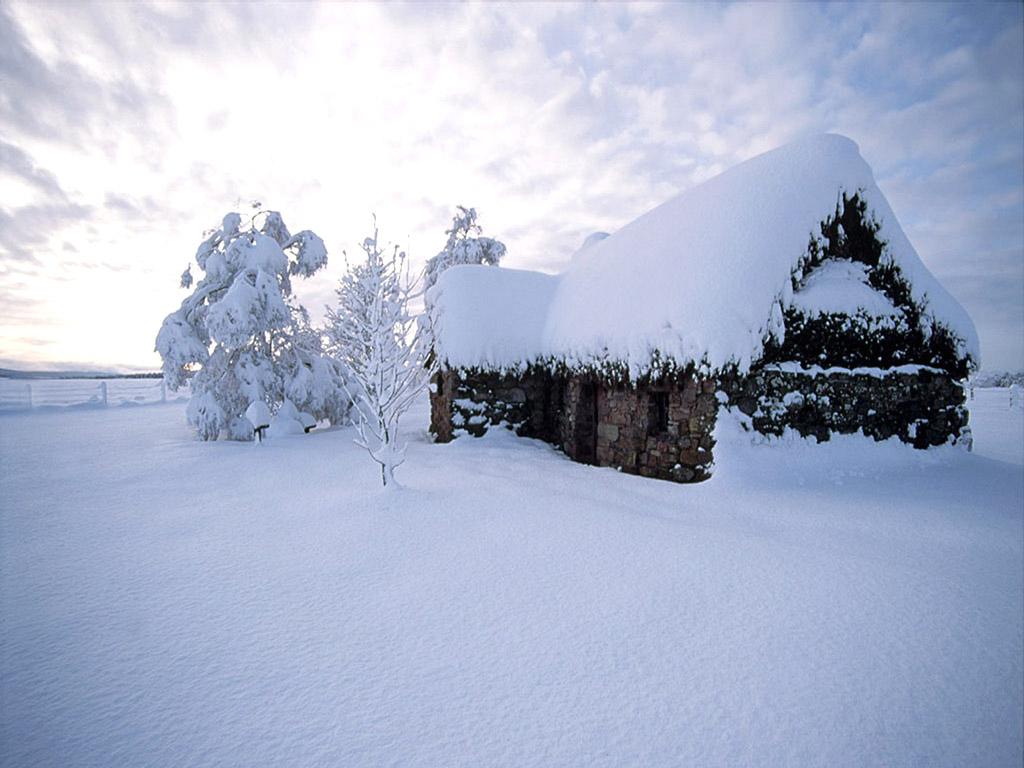 我喜欢冬天的几个理由 - 景  波 - 景 波DE博客