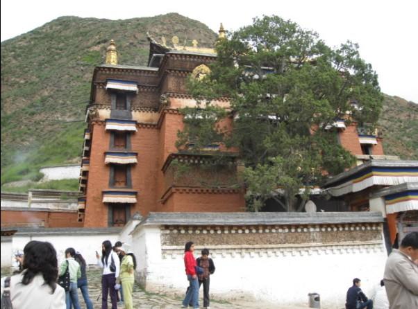 图片144:拉卜楞寺大经堂   蛮有兴致的!可是大部分人都睡着高清图片
