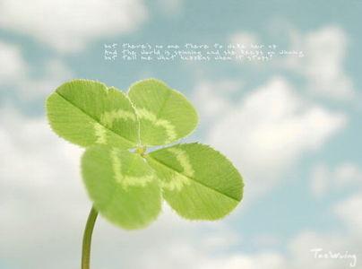 倖運草 - wu-zhijuan18 - Jens sweety house