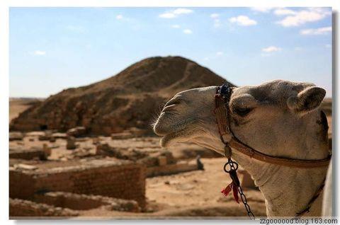 【原创图片】2009埃及行(三) - zzgoooood - zzgoooood的博客