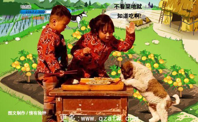搞笑 qq 农场/QQ农场偷菜搞笑图片超级搞笑! / 陈晓阳的日志