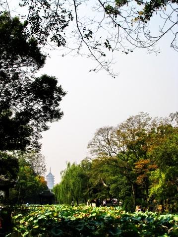 华东采风苏州拙政园(2008.10.14) - ★风暴之眼★ - 风暴航空