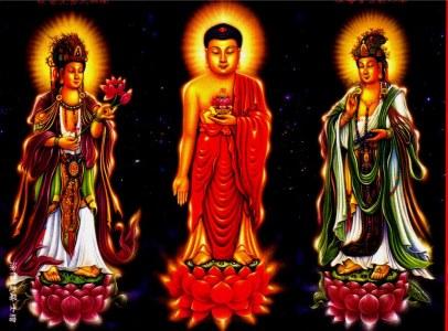 有人拍到了真佛.菩萨◆(谁转谁升官发财,就会保佑他们全家夫妻和睦,平安。挺灵的) - 家中购 - 有机蔬菜 .家中购