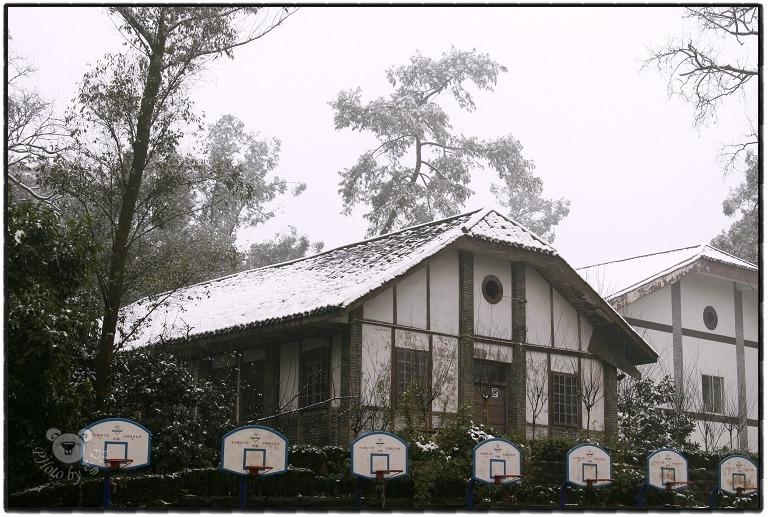 歌乐山残雪——主城最后的雪景 - cqsnowmouse - 雪鼠影像空间