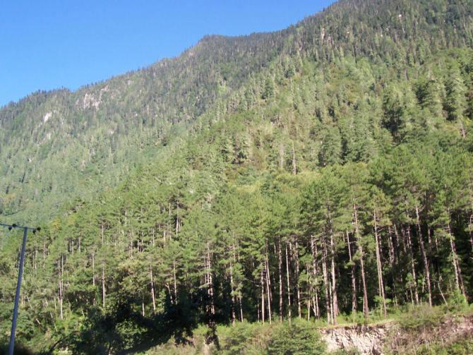 游走在西藏和尼泊尔(二十二) - qdgcq - 青岛从容