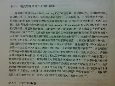 【分享】鞘氨醇杆菌属资料 - hampc168 - 茉莉花