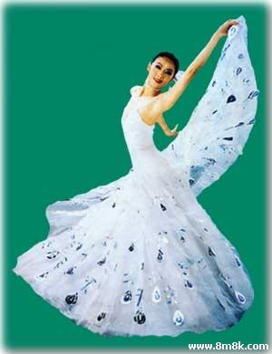 杨丽萍的舞蹈世界