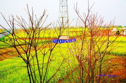 [原创]万里迊春25--难堪南昌《如梦令》 - 自由诗 - 人文历史自然 诗词曲赋杂谈