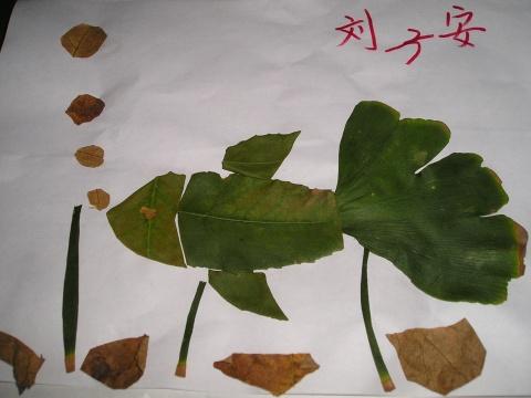 美丽的树叶帖画