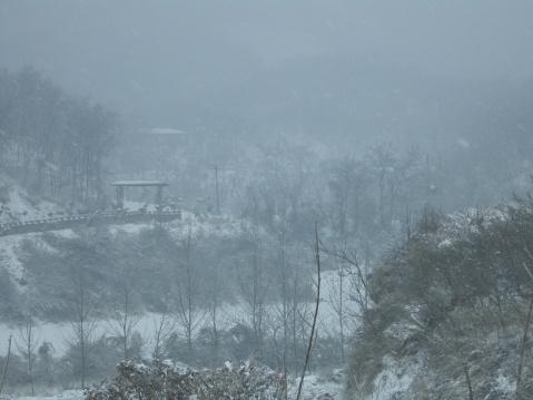 【原创】第 一 场 雪 - 大隐吕山 - 大隐于朝 中隐于市 小隐于野