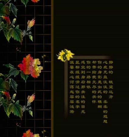 魂牵梦萦~大图音画 - 雨柔的日志 - 网易博客 - 蓝梦伊人 - 蓝梦伊人的博客幸福是一种感觉,如果你感觉