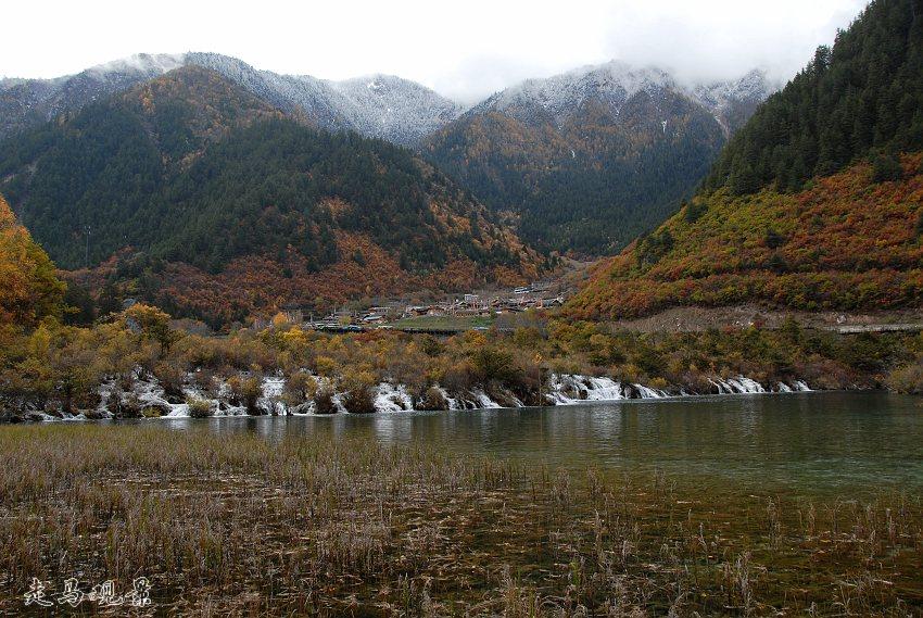瑞雪过后看九寨 - 西樱 - 走马观景