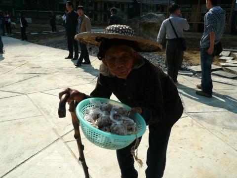 [原创]    你去过桂林,可你去过小桂林吗?(图) - 幽兰猗猗 - 幽兰的心灵养吧