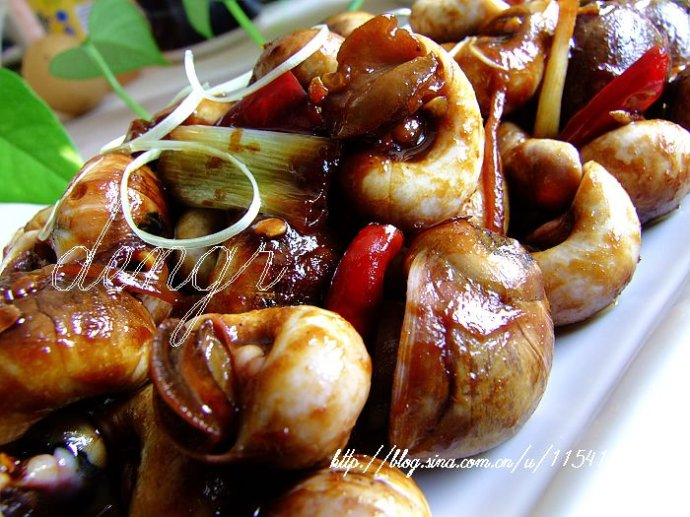 慢生活中的慢食---酱爆香螺(16道慢食诠释时尚慢生活 - 可可西里 - 可可西里
