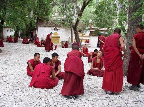 别样风情游西藏:21色拉寺辩经中 - 建龙 - 莫问回程
