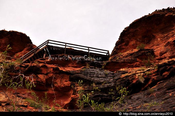【北领地】帝王谷,离天最近的地方Kings Canyon--Endless Story - 鱼儿 - 鱼儿的遨游生活