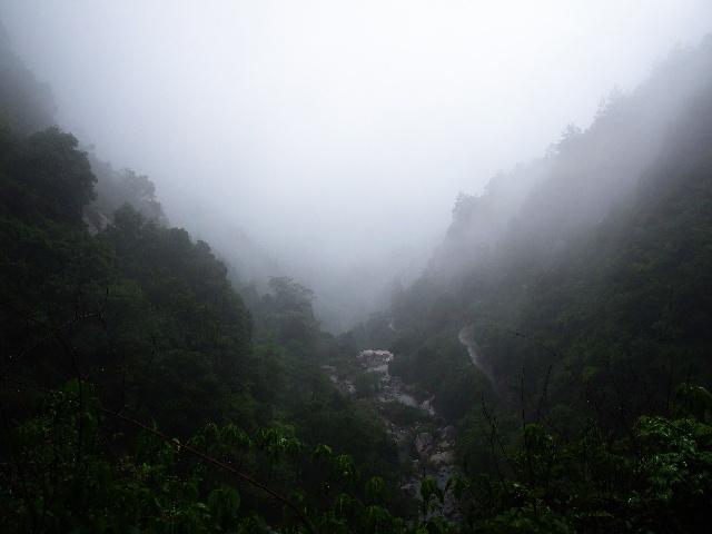 冒雨游山也莫嫌,只缘山色雨中添--5.1游庐山秀峰 - 侠义客 - 伊大成 的博客