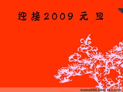 2009新年的问候 - 午马 - 午马游记