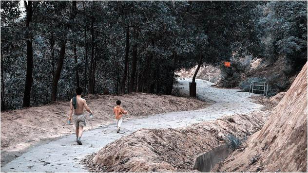 [原]深圳·在那南山顶上 - Tarzan - 走过大地