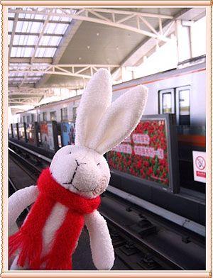 坐地铁的兔子 - ёошул - 牢騷小分隊