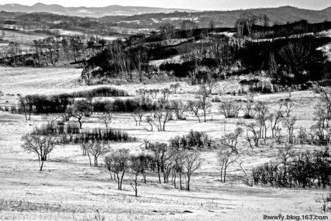 黑白印象 - 热河山狸子 - 热河山狸子的博客