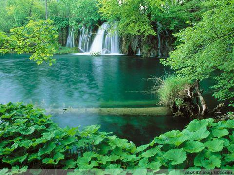 祝贺一湖镜为人父 - 艾之宁耶 - 自由与和平.博客精神