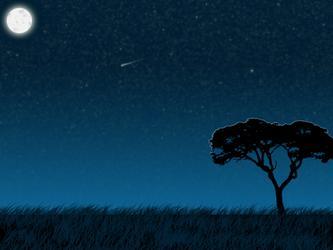夏日的夜,很轻,很静…