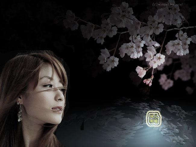 春风带走了我的思念 - 黑玫瑰的博客