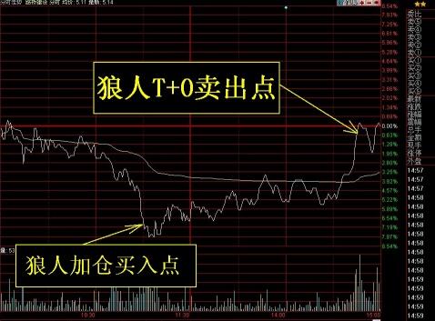 """""""狼人""""中线股票正在建仓中(附:周二实盘) - 无名狼人炒股 - 以狼性而立,以股票结友,以交易为生!"""